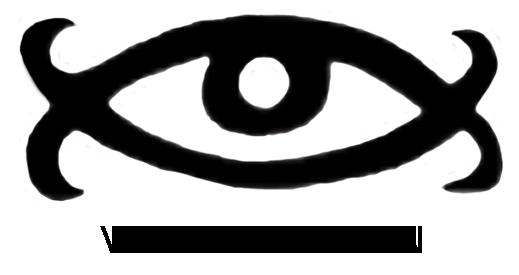 virtuevision.org